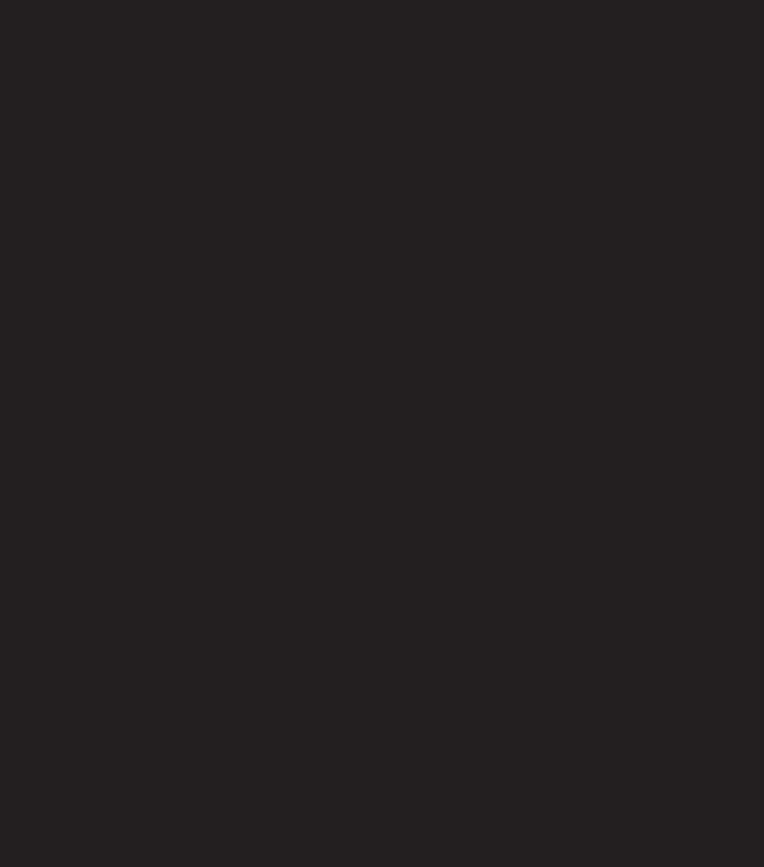 v4_logo